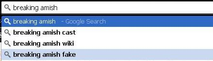 Google Search Bar with a Query About Breaking Amish the Show