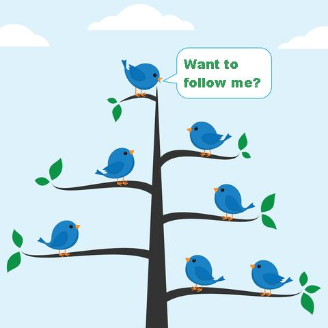 "Graphic of Twitter birds on branches; the bird at the top asks the birds ""Want to follow me?"""