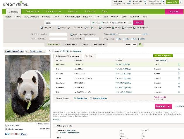 panda on Dreamstime stock photo service