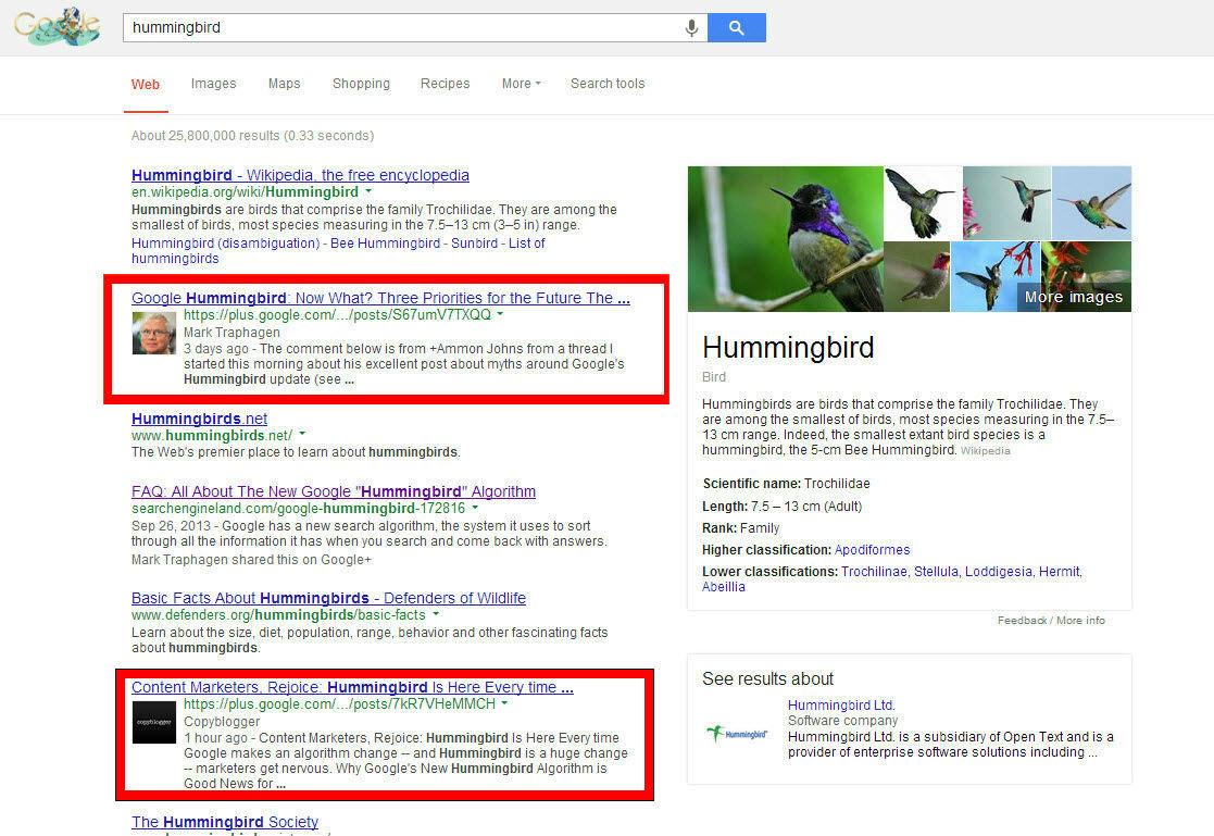 hummingbird-redbox