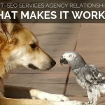 Dog and parrot like client-agency relationship