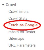 screenshot of Fetch as Google Webmaster Tool