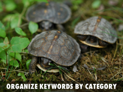 Organize keywords by category