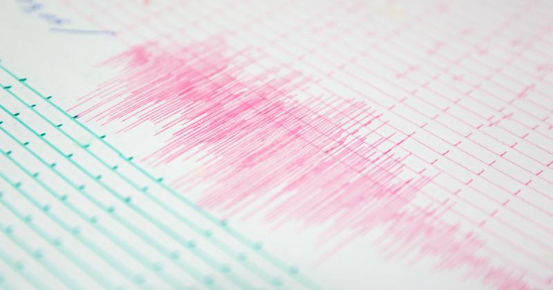 Seismograph volatility readings.