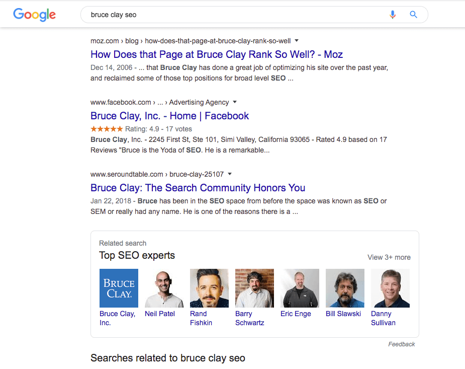 "Google search results for ""bruce clay seo""."