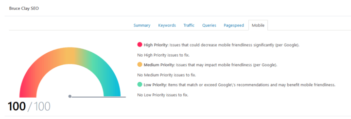 Bruce Clay SEO mobile performance tab.