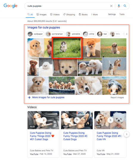 Google SERP with image results.