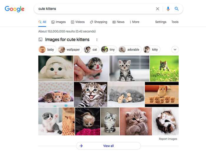 Google SERP displaying images for cute kittens.